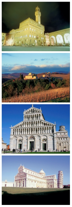 Palazzo Vecchio Florence, Vine Yards, Dumo and Leaning Tower Pisa Italy To-europe
