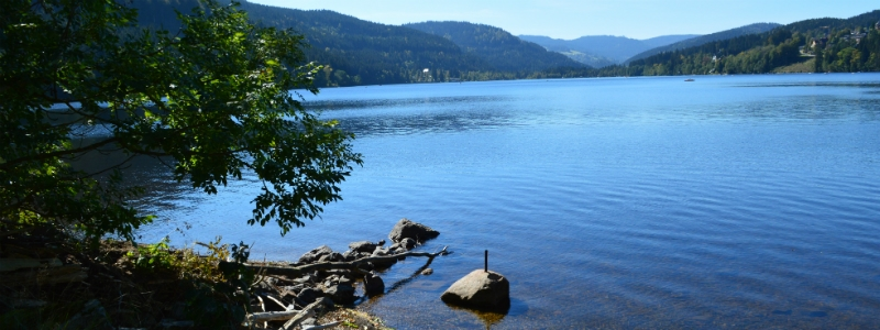 Travel To Europe Your Way Day Trip To Scenic Lake Titisee And Into The Black Forest
