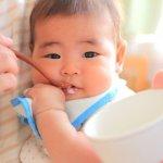 【全まとめ】釜揚げしらすを離乳食で使うには 離乳が始まるママ必見