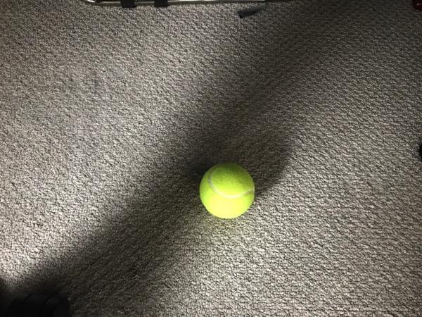筋膜リリース テニスボール