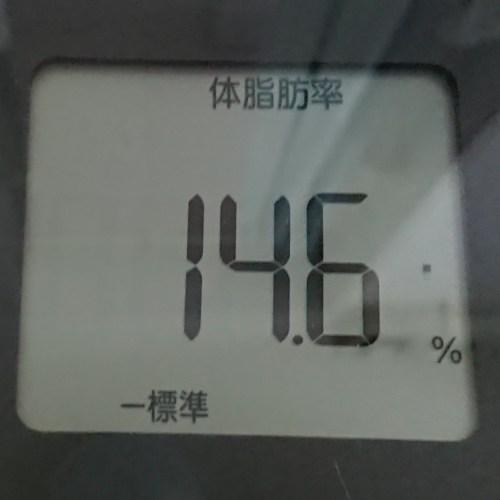 体脂肪率14.6%の体組成計