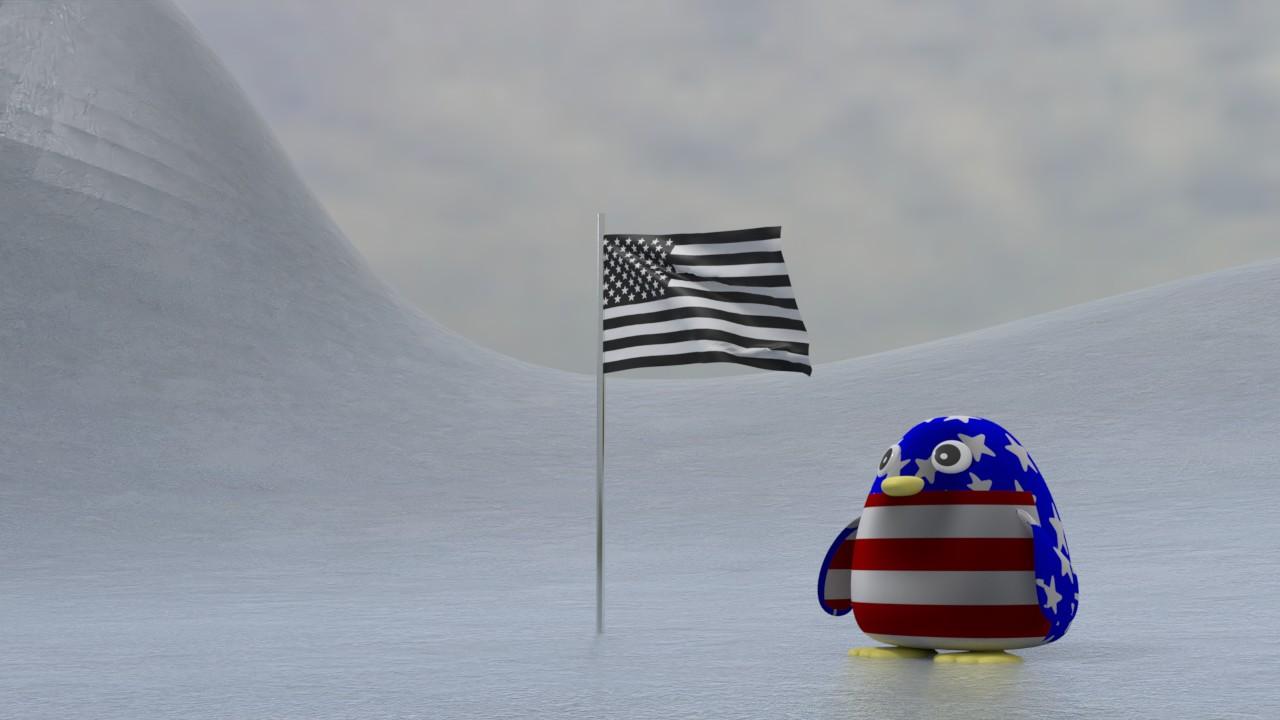 白黒星条旗とカラフル星条旗ペンギン