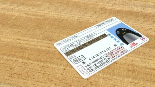 ぺんぎんさんの運転免許証