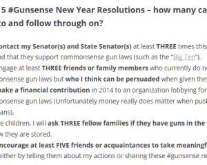 5 Gunsense NY Resolutions