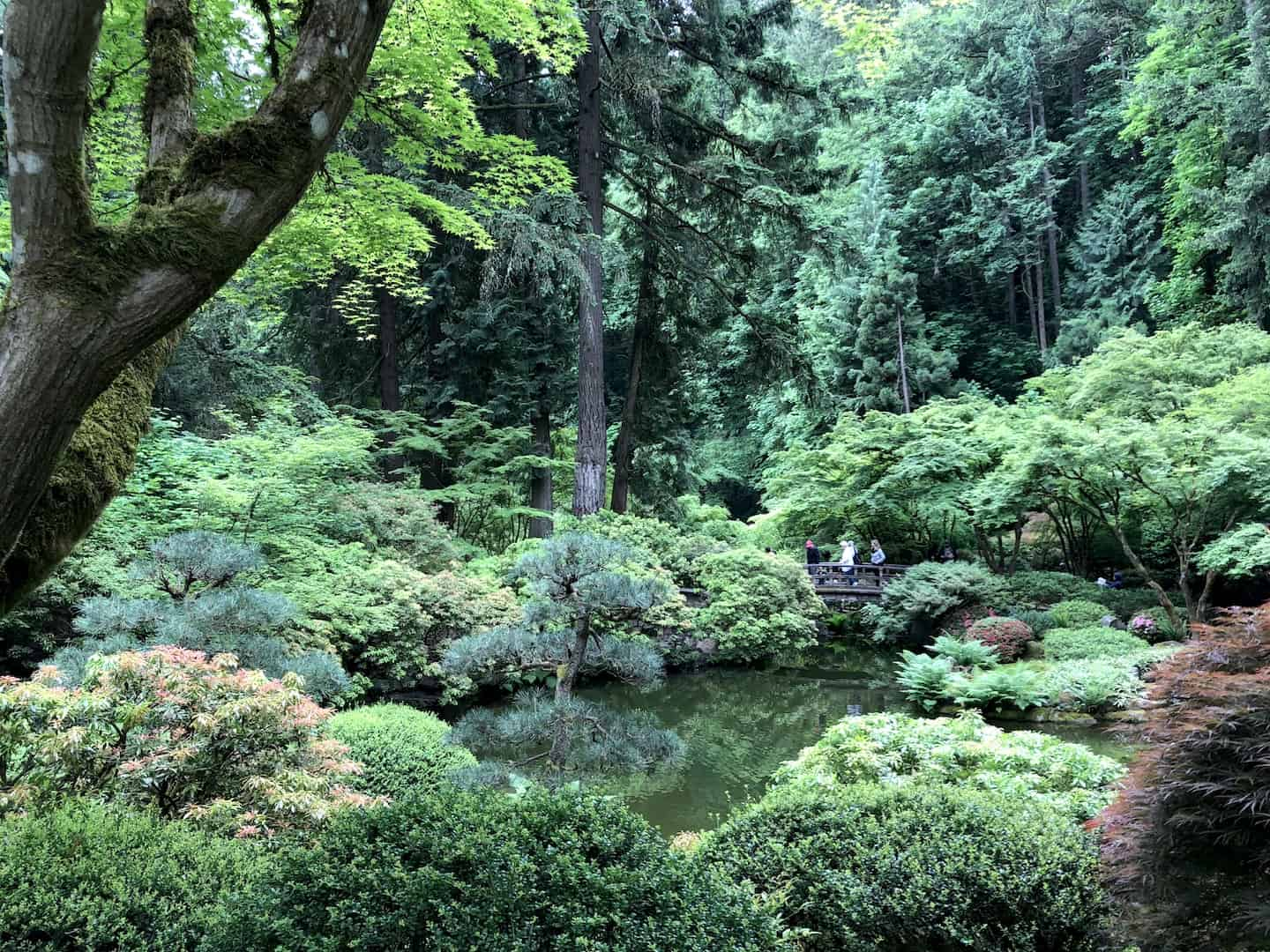 Find your zen at the Portland Japanese Garden with kids - To & Fro Fam