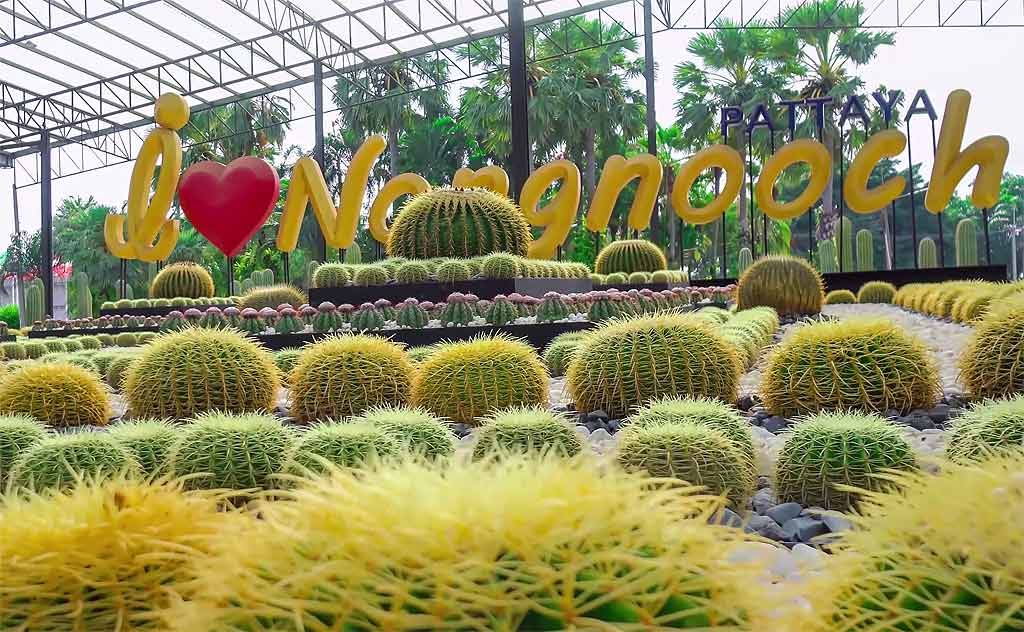 I love Nong Nooch sign over cacti in Nong Nooch garden