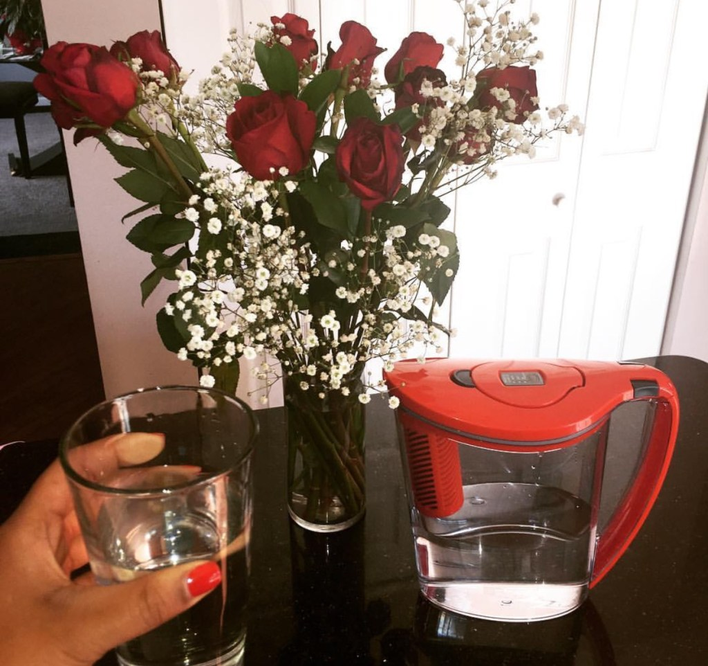 Brita Stream Product Review