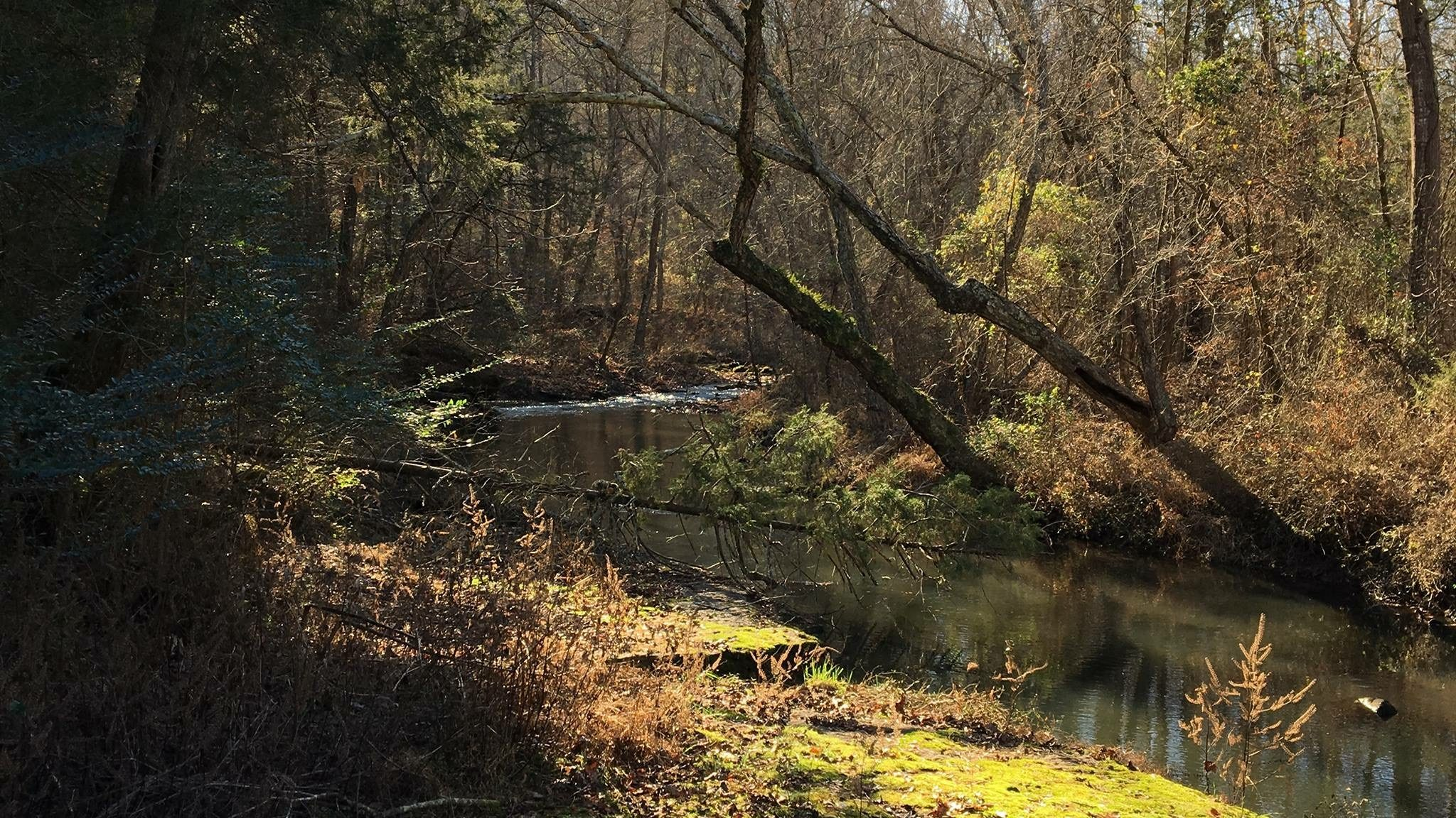 Isabel Creek runs past Tobias Wray's Arkansas home