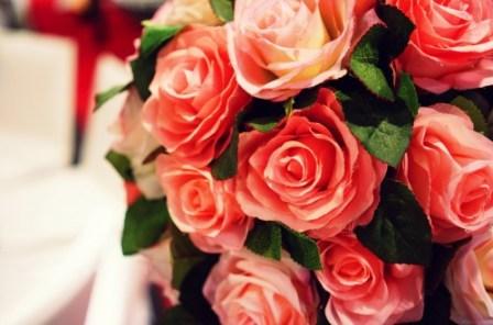 coral_rose
