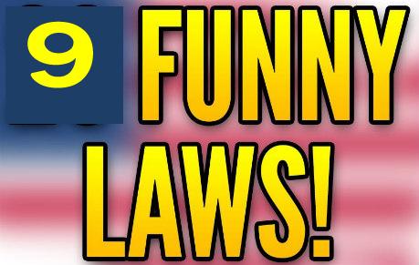 BIBE funny laws copy