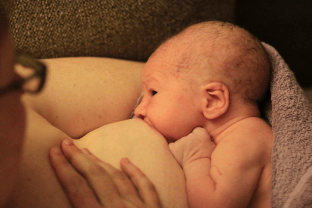 First feed