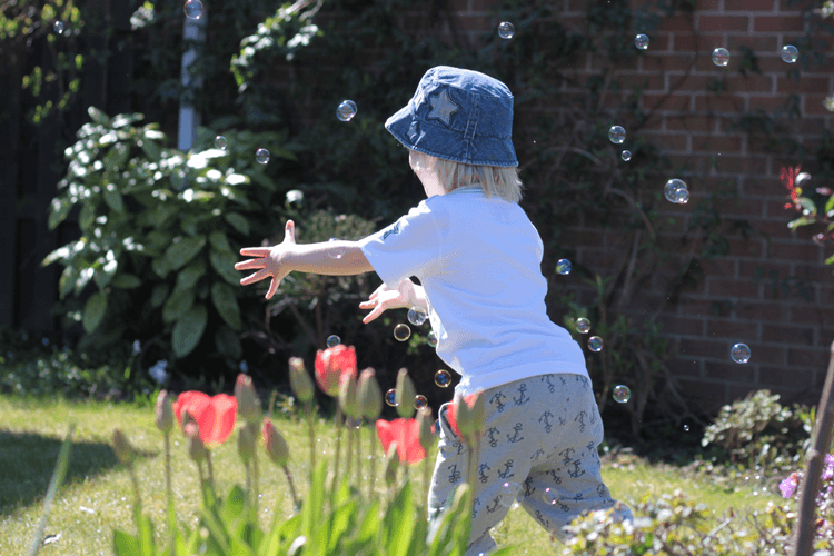 Toby chasing bubbles in Rockin Baby