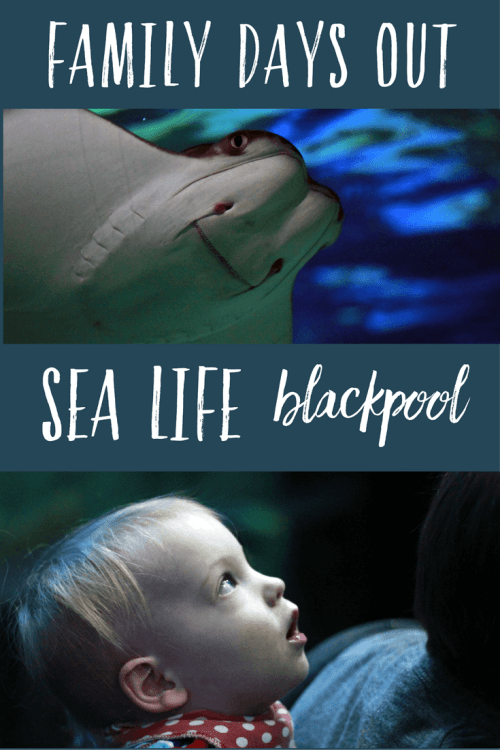 A family day out at Sea Life Blackpool