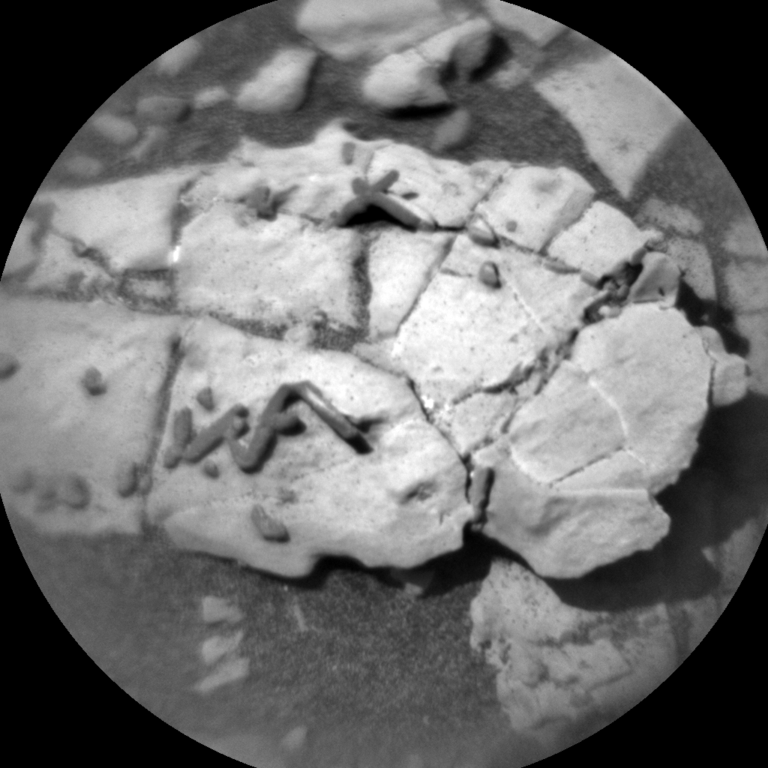 Fossils found on Mars?