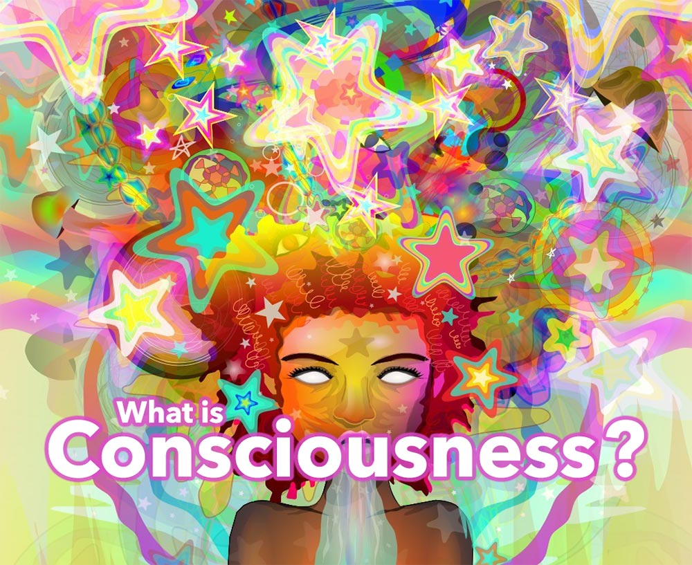 What is Consciousness?