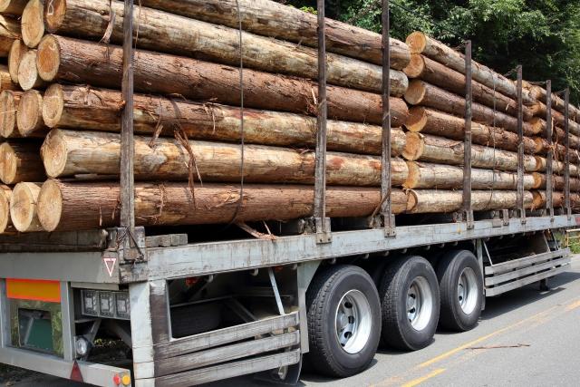 山林売却にかかる税金