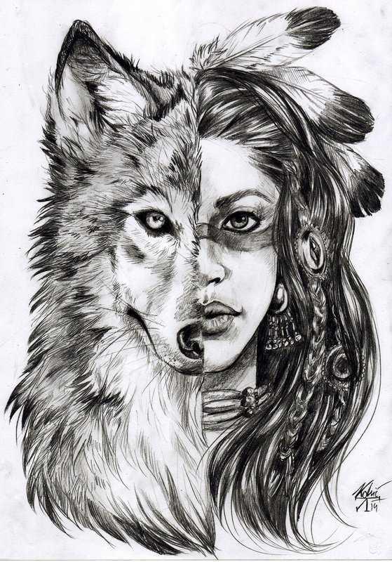 Картинки волков красивые для срисовки – Ой!