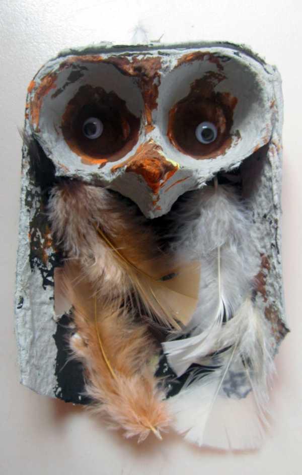 Сова в очках фото – Ой!