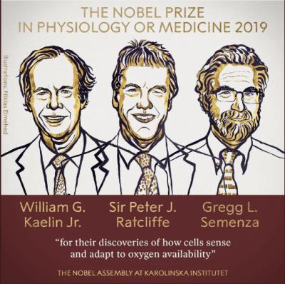 В Стокгольме объявили лауреатов Нобелевской премии в области медицины
