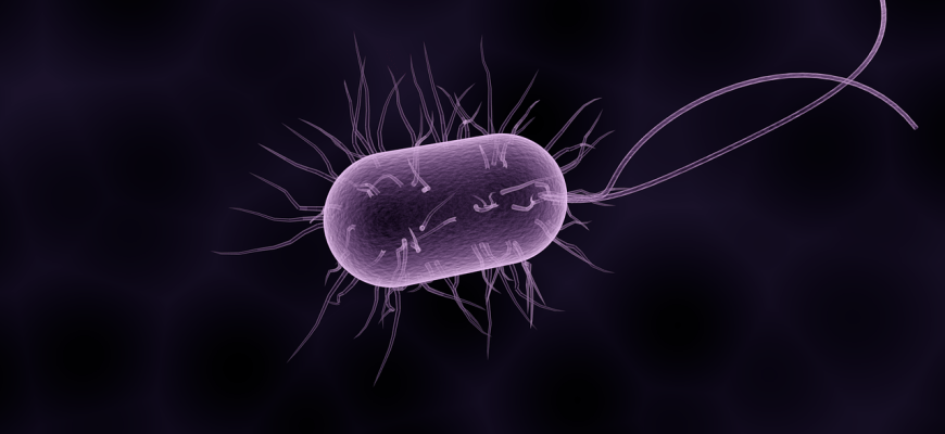 Новый китайский коронавирус пневмонии выходит из под контроля: как защитить себя