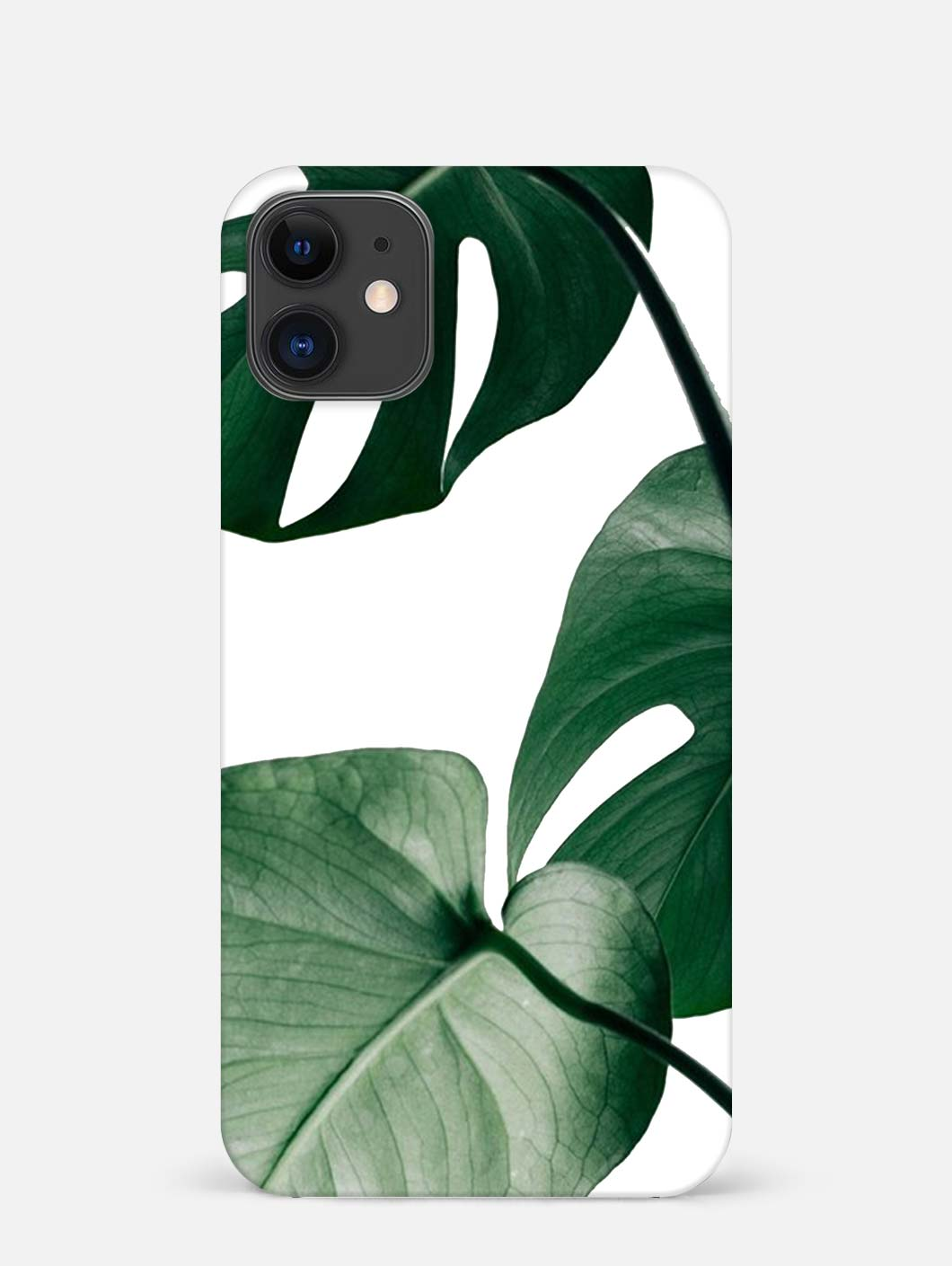Monstera iPhone 12 Mini Mobile Cover