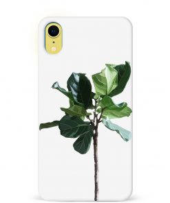Fig Plant iPhone XR Mobile Cover