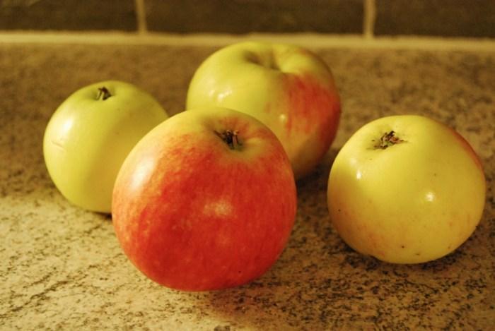 apple autumn