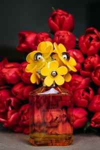 female perfume against red tulips bouquet