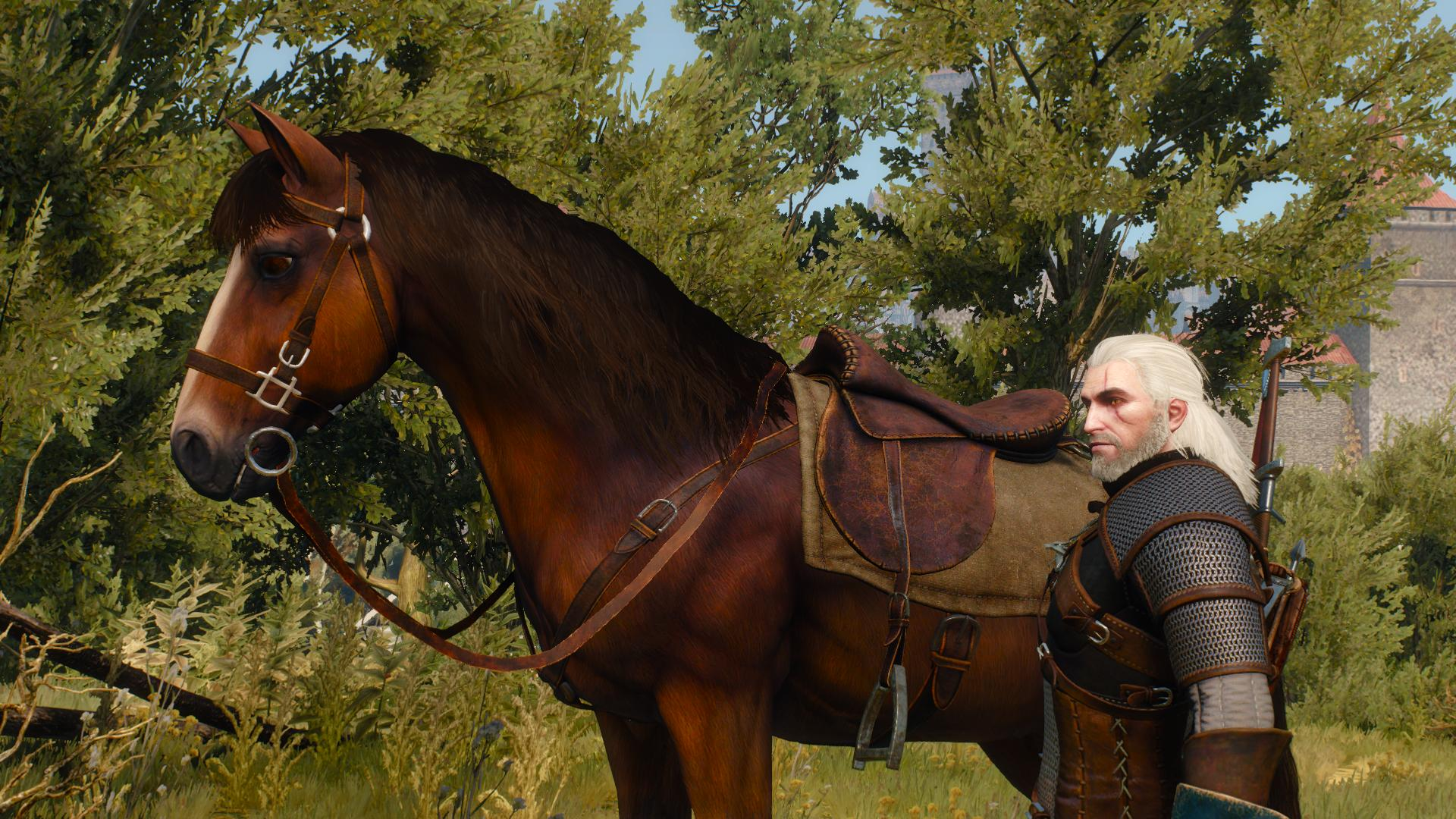 the-witcher-3-wild-hunt-nvidia-hairworks-horse.jpg