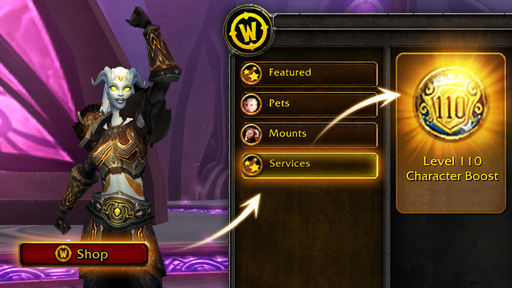 World of Warcraft boost 110