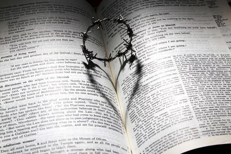 Frases de Dios para el día a día