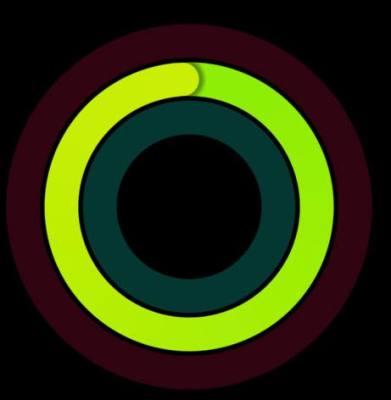 緑の円は『運動した時間』を示す