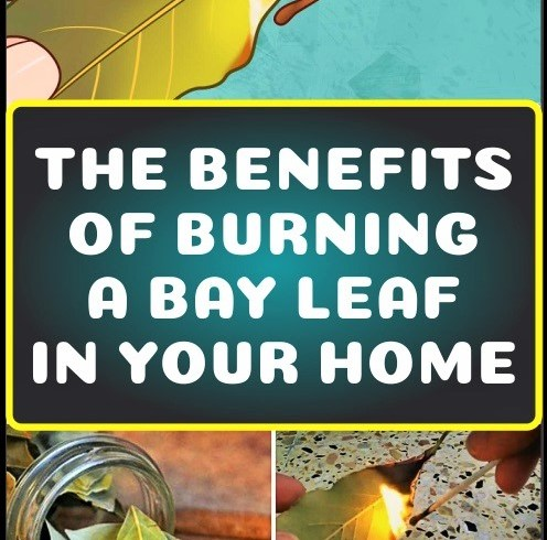 this-is-why-you-should-burn-a-bay-leaf-in-your-home