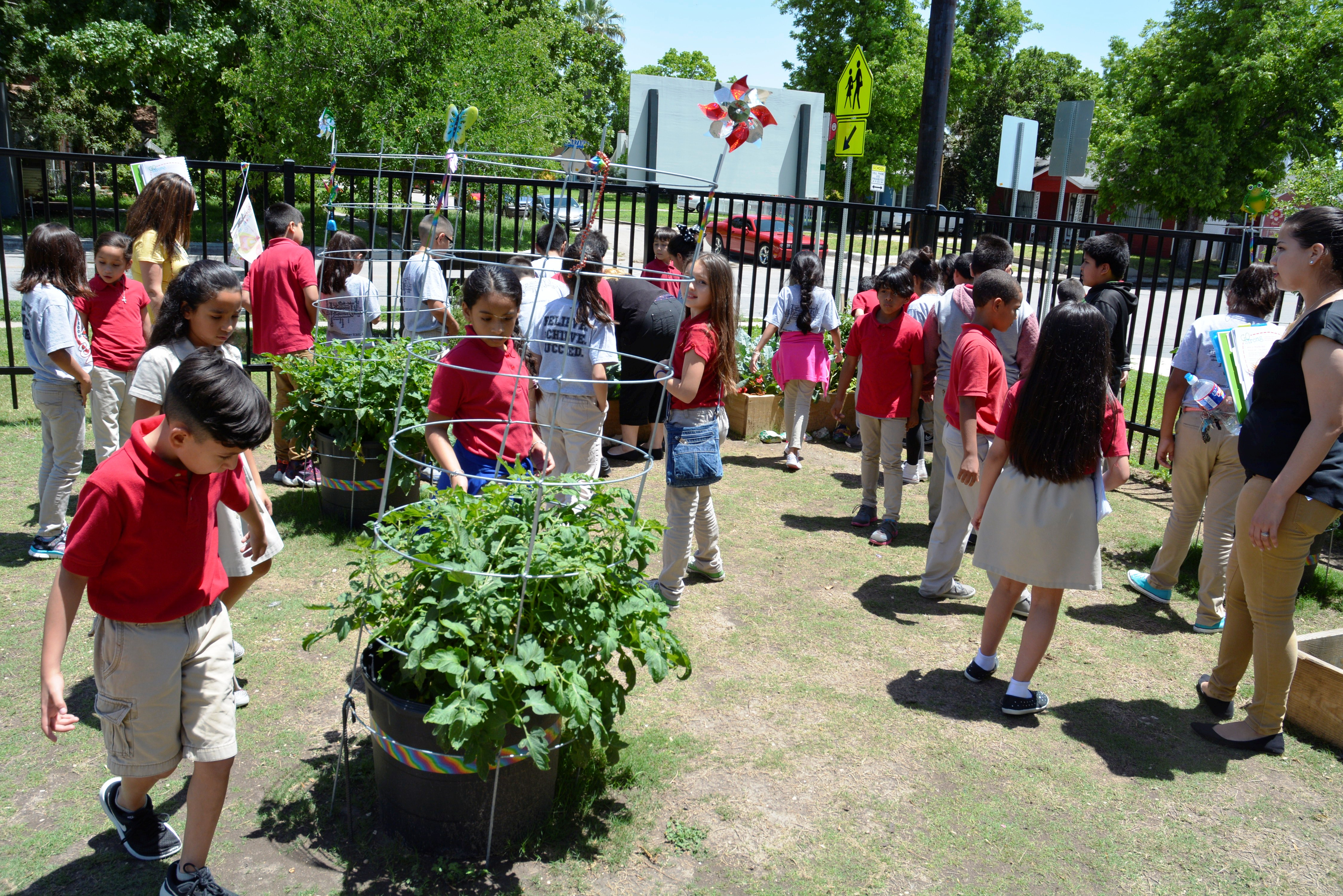 Learn Grow Eat And Go Program Teaches Youth About Gardening Nutrition Physical Activity