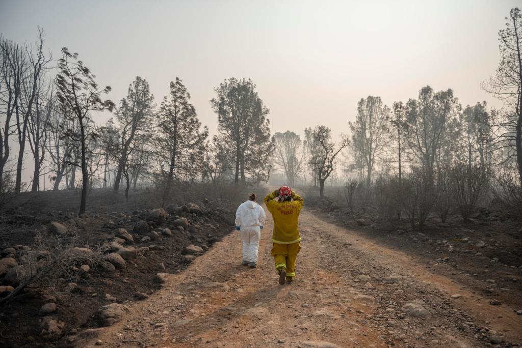 Two individuals walk down a dirt road flanked by burned trees and blackened soil.