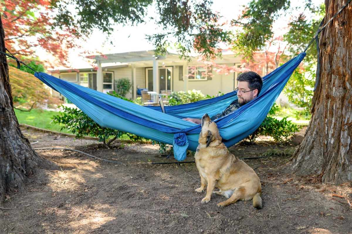 Brandon Wright works on his laptop while laying in a hammock and his dog sitting next to him