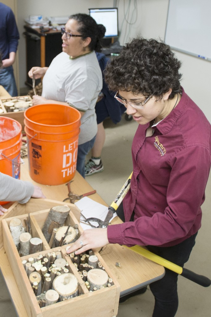 Plant science major Natasha Aybar trims twigs and small logs to stuff to create cavities for a bee hotel during a workshop at the University Farm.
