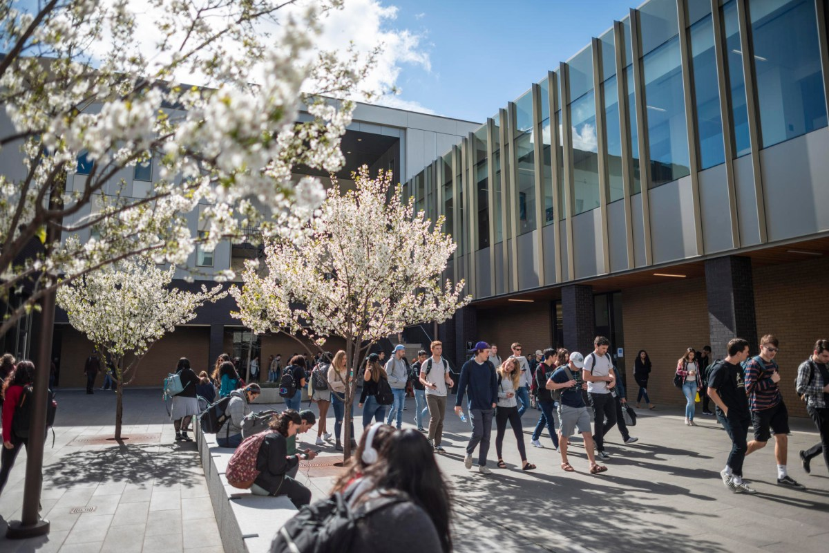Trees' white blossoms and students walking from an academic building.