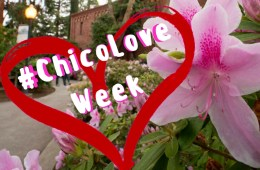 #ChicoLove Week.