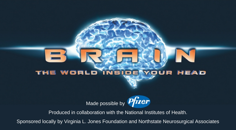 "The newest exhibit at the Gateway Science Museum, ""Brain: The World Inside Your Head,"" uses interactive stations to help visitors visualize how and why our miraculous brain works."
