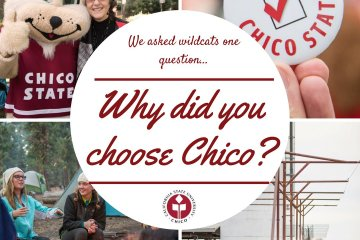 We asked Wildcats one question... Why did you choose Chico?