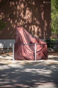 The Wildcat statue sits beneath the cardinal tafetta prior to its unveiling.