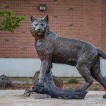 Front view of the wildcat statue.