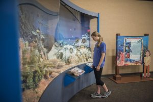 Leana Thompson (right) looks at a new exhibit, Climate Change Oceans: Acid vs. Life that will be on display in the North Gallery of the Gateway Science Museum through September.