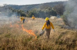 Students learning about fire management in a Conservation and Restoration class at the Big Chico Creek Ecological Reserve in December, 2017. The BCCER has been awarded a pair of grants for fire mitigation and education.