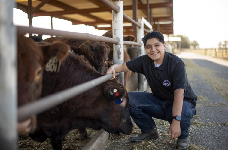 Jonathan Najera poses next to cattle at the University Farm.