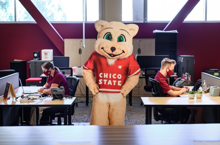 A cardboard cutout of Willie the Wildcat stands between two students socially distanced and working at desks