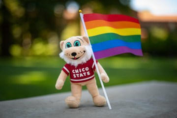 A plush doll of a wildcat holds a pride flag