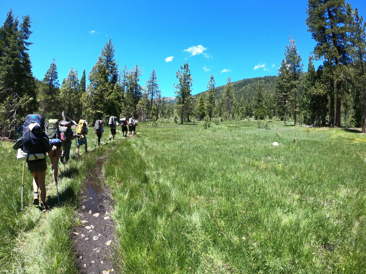 A group of backpackers hikes through a lush green meadow in the Trinity Alps.