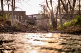 A walking bridge extends over a creek flowing through campus.